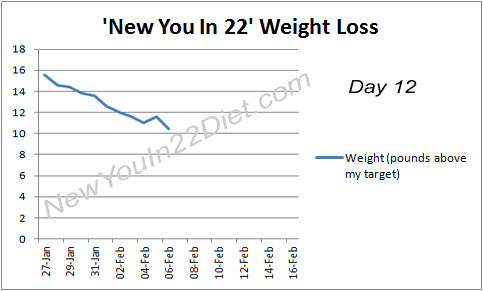 My New You In 22 results - day 12